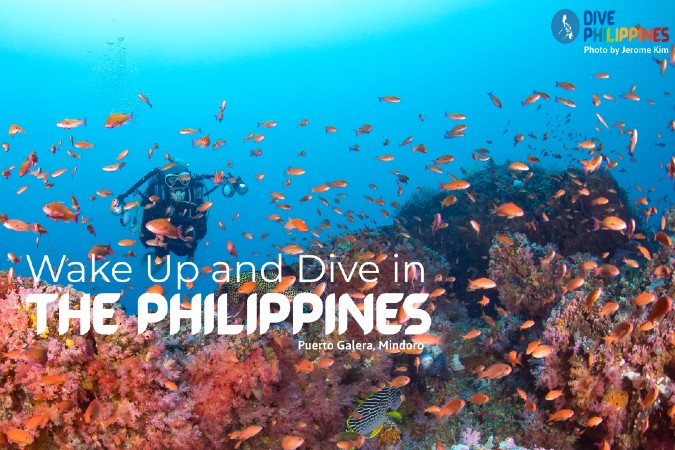 Wake up and Dive in the Philippines